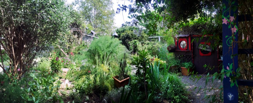 spellbound herbs pano
