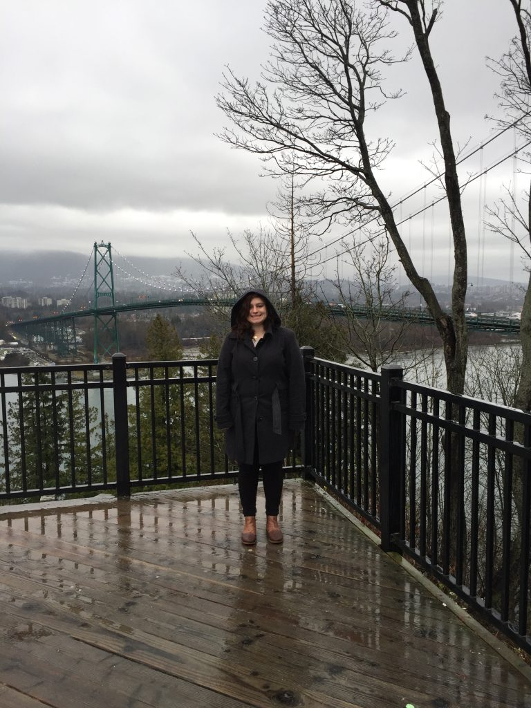 Lions Gate Bridge Overlook-Sights in the Sun Life & Style Blog